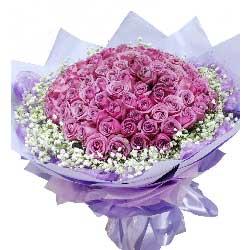 爱情见证/99支紫玫瑰