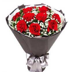 11支红玫瑰/好温暖