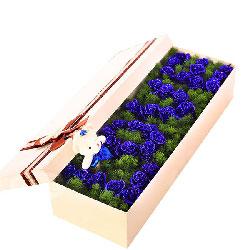 33支蓝色玫瑰/终有一日会在最美丽的地方相见