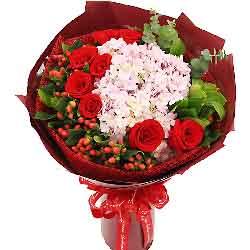 日子因你而灿烂/9支红玫瑰