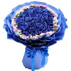 愉悦年华/33枝蓝色玫瑰