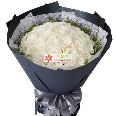 想念你的人/33枝白色玫瑰