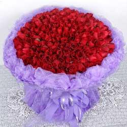 我要和你老去/365枝红玫瑰