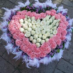 欢欢喜喜/50枝粉色康乃馨玫瑰