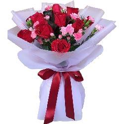情比海深/11支红色玫瑰