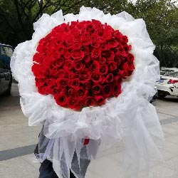 爱与你一生相伴/99枝红色玫瑰花