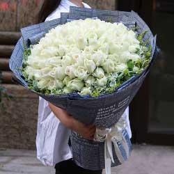 与你一同走过/99枝白玫瑰
