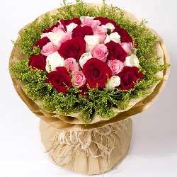 爱依旧/33枝玫瑰