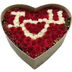 你是我的想念/99支玫瑰礼盒