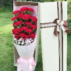 感谢有您/18支红色康乃馨礼盒
