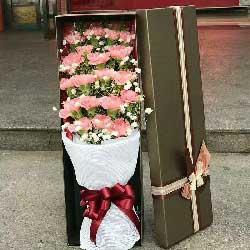 诚挚的祝福/19支粉色康乃馨礼盒