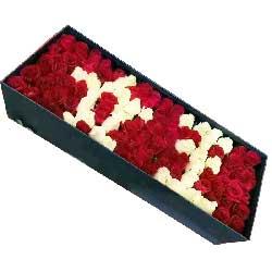 你是我的女王/99枝玫瑰礼盒