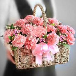 深深感谢您/29枝粉色康乃馨花篮