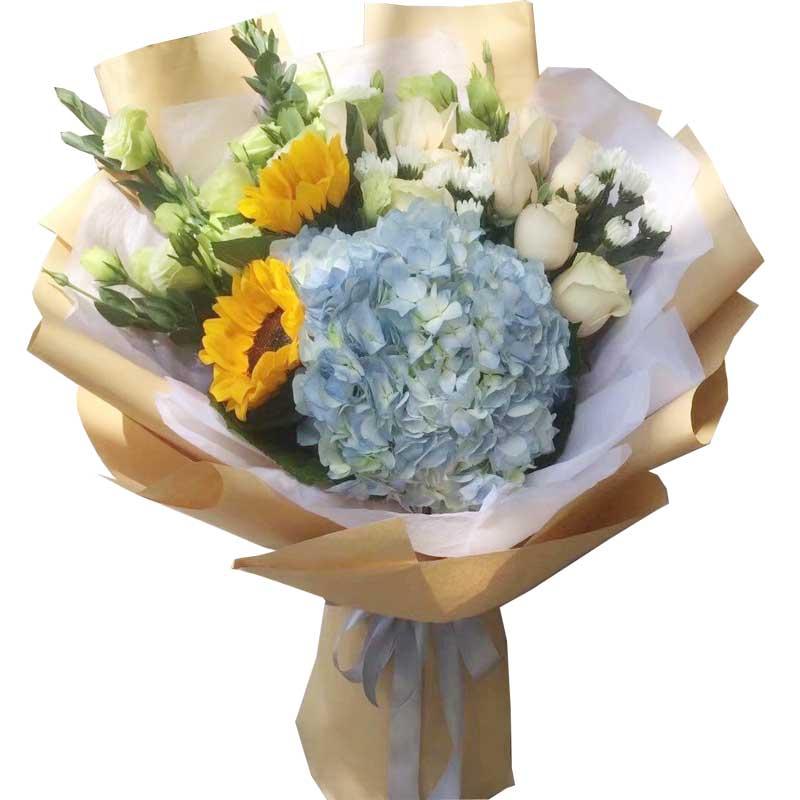 问候/9支香槟玫瑰,2支向日葵,1支蓝色绣球花