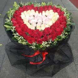 这是我们的婚约/99支玫瑰