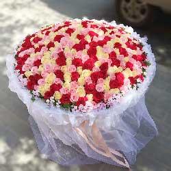 爱你天荒地老/365支玫瑰