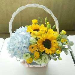 人生路上的使者/向日葵,桔梗,绣球花