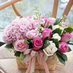 最美的祝福/20支玫瑰