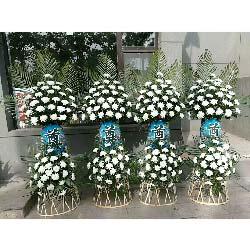 哀思花篮/70枝白菊