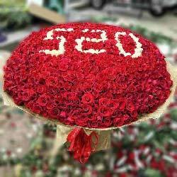 爱你一生/365支玫瑰