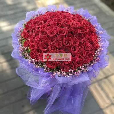 知心爱人/99支红色玫瑰