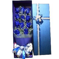 请做我幸福的新娘/11支蓝色玫瑰礼盒