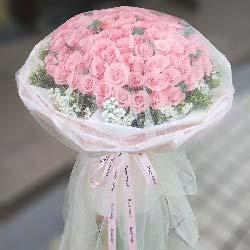 一辈子的爱/66支粉玫瑰