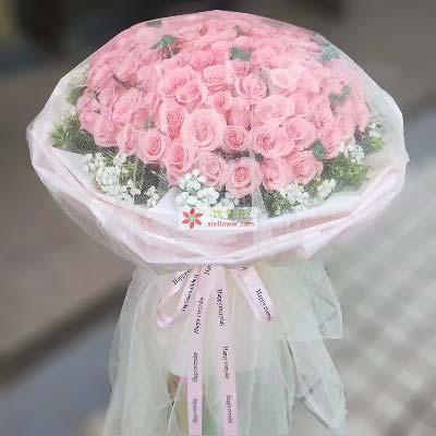 一辈子的爱/66枝粉玫瑰