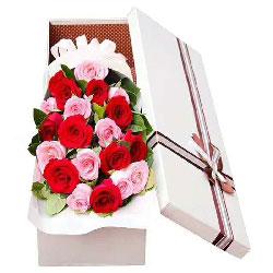爱你久久/20支玫瑰礼盒