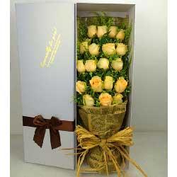 19支黄玫瑰,宝贝对不起