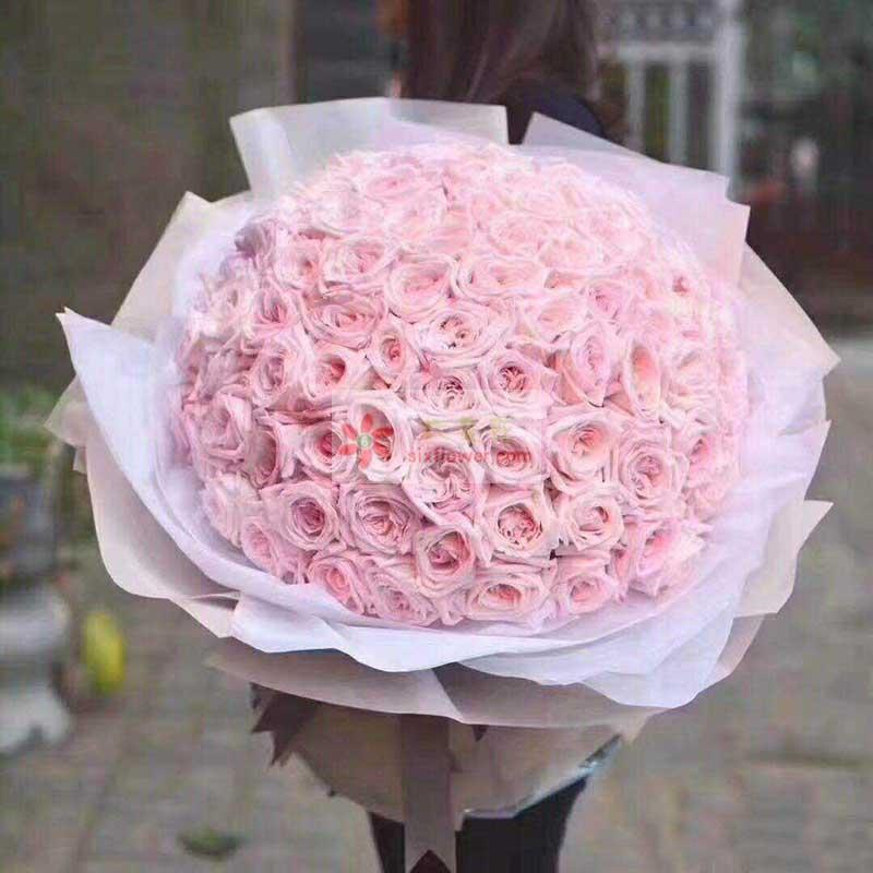99朵粉色佳人玫瑰,永远都是幸福的