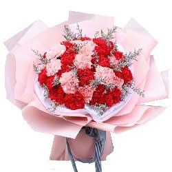 30朵康乃馨花束,祝您精彩每一天