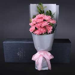 12朵粉色康乃馨,人生的美好
