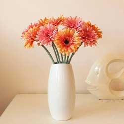 10朵扶郎花,瓶插花,幸福一年胜一年