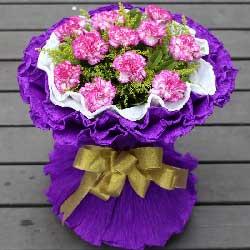 11朵紫边康乃馨,岁月馈赠