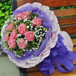 11朵粉色康乃馨,爱的温暖