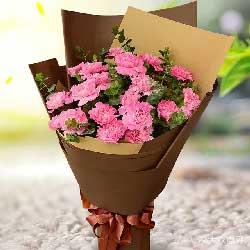 18朵粉色康乃馨,人生的意义