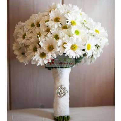 30朵雏菊,手捧花