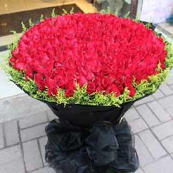 199朵红玫瑰,每天的爱着你