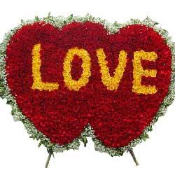999朵玫瑰,爱你一生一世
