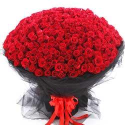 520朵红玫瑰,久久的相伴