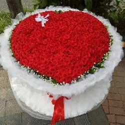 999朵红玫瑰,每分每秒都爱你