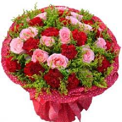 16朵红色康乃馨,12朵戴安娜玫瑰,一生一世为你起舞跳跃
