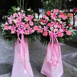 20朵粉色扶郎花,单层花篮,财源滚滚达三江