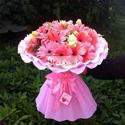 29朵粉色扶郎花,祝你一路顺风