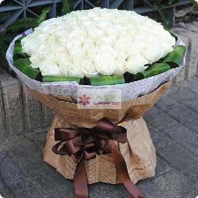 99朵白玫瑰,我需要你
