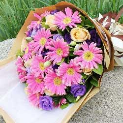 11朵粉色扶郎花,11朵紫色桔梗,祝您幸福快乐