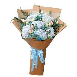 8只蓝色绣球花,12朵红袖玫瑰,完美的你