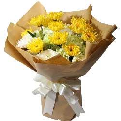 23朵菊花,愿你在天堂一样快乐
