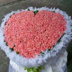 999朵粉玫瑰,为你沉醉的心